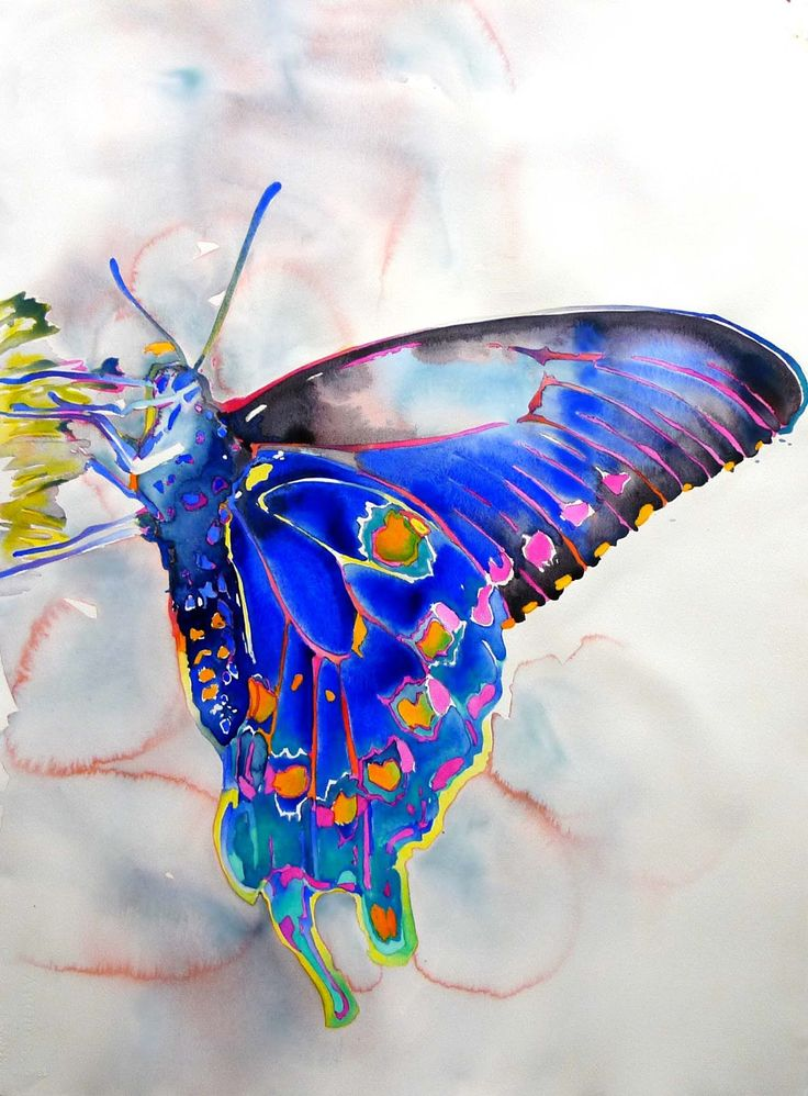 Carol Carter watercolor of butterfly
