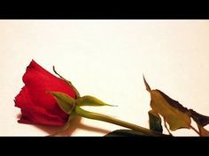 20 Sad Love Quotes - Love Failure Quotes - (Moreinfo on: https://1-W-W.COM/quotes/20-sad-love-quotes-love-failure-quotes/)