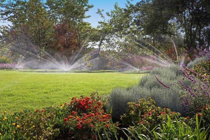Auch wenn man verreist ist, vertrocknet hier nichts: Eine automatische Bewässerung hält den Garten jederzeit im grünen Bereich.