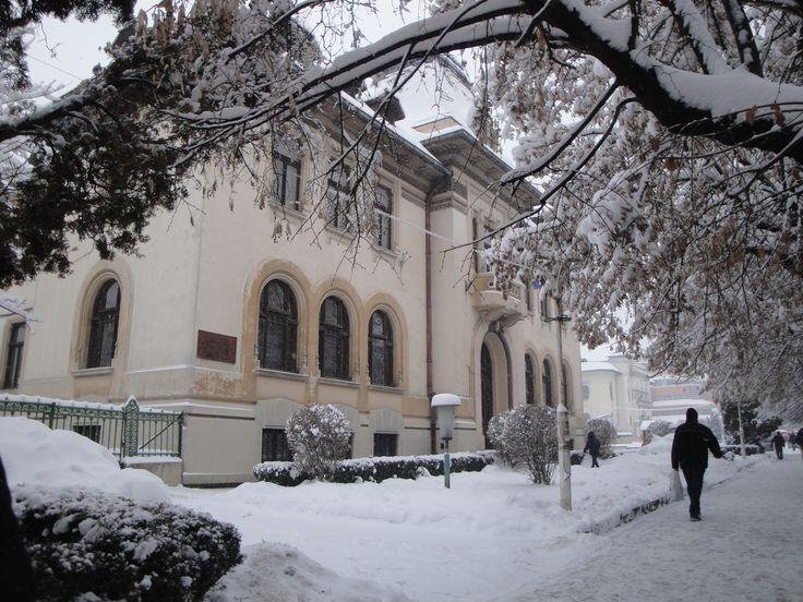 Muzeul de istorie, Câmpulung