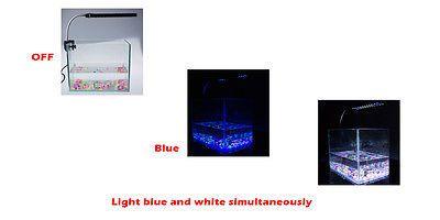 Clip On Led Aquarium Lighting