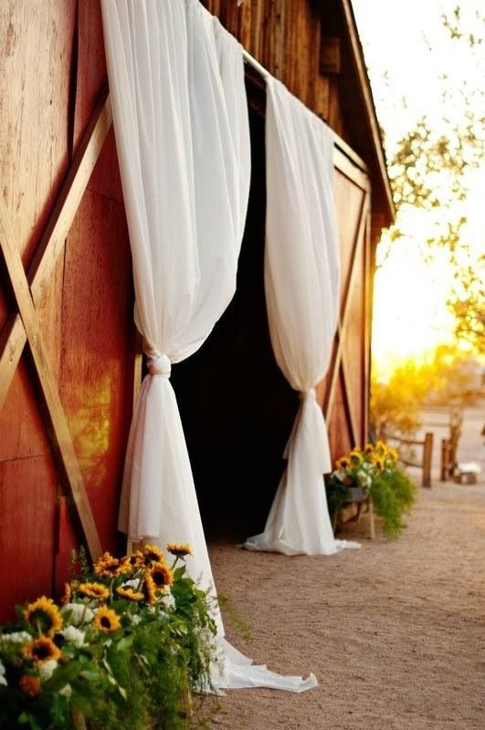 Hanging Drapery for entrance to the barn and sunflowers in long troughs outside either side of the entrance.
