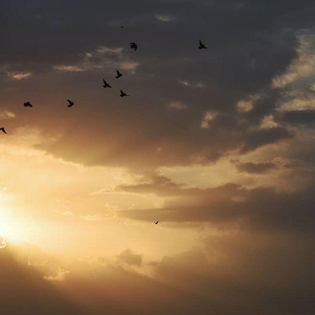 الساعة الأكثر ظلمة هي الساعة التي تسبق شروق الشمس باولو كويلو بكاميرتي الساعة الأكثر ظلمة هي الساعة التي تسبق شروق الشمس باولو كو Celestial Clouds Outdoor