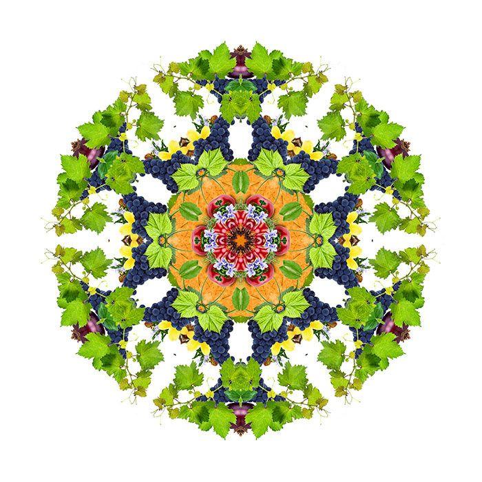 #Mandala de #Vino #Tempranillo   Coleccion limitada impresa en el mejor lienzo del mundo.   www.mandala.info  ELEMENTOS QUE LO COMPONEN: Tabaco, Cereza, Clavo, Romero, Ciruela, Vainilla, Parra, Uva Tempranillo