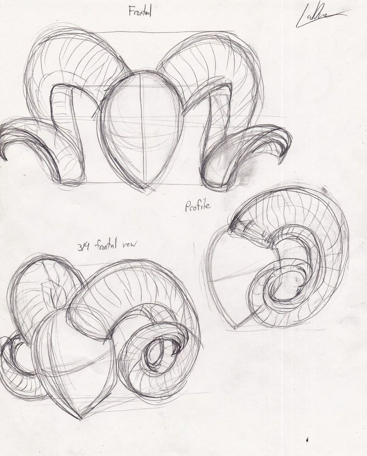 how to draw ram horns - Google Search