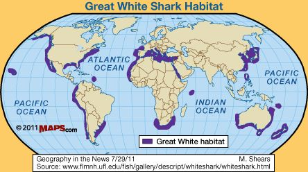 The Great White Shark Habitats –