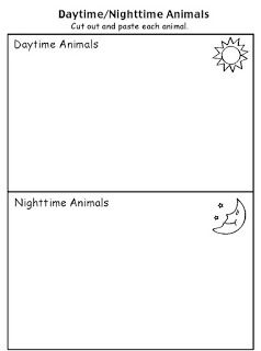 Nocturnal animals sorting mat