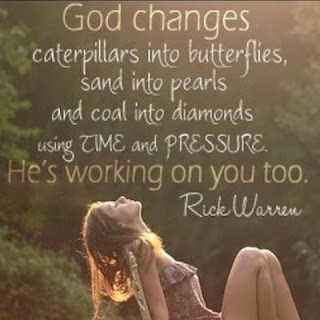 """God changes caterpillars into butterflies, sand into pearls and coal into diamond using TIME and PRESSURE. He's working on you too.""   -Rick Warren"