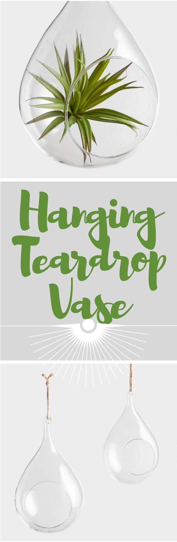Cost Plus World Market Hanging Teardrop Vase  #ad #vase #indoorplants #plants #terrarium #home #homedecor #decor