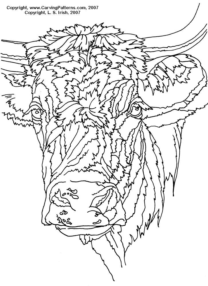 Cow Pattern Animal Fur Textures Pyrography Basics Art