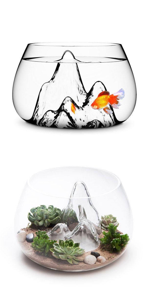Landscape fish bowl + terrarium