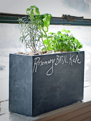 10 top gardening trends for 2014 chalkboards planters for Indoor gardening trends