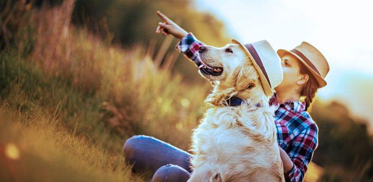 Irgendwas fehlt in deinem Leben? Möglicherweise ist das ein treuer Wegbegleiter. Ein Haustier, das immer für dich da ist. Aber du fragst dich: Welches Haustier passt eigentlich zu mir...