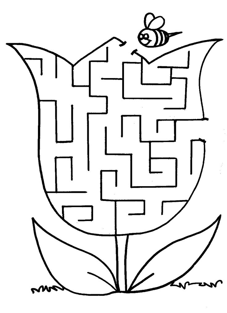 This is a photo of Dynamite Preschool Maze Printable