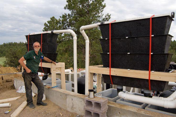 Best 25 pond filter system ideas on pinterest pond for What is the best koi pond filter system
