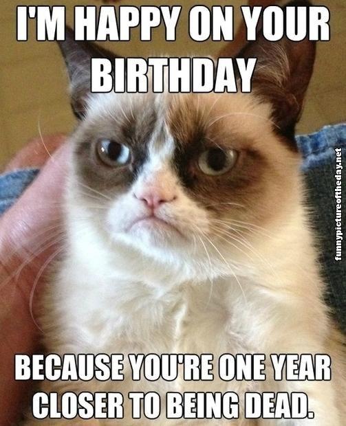 Grumpy Cat Birthday | Grumpy Cat Happy Birthday