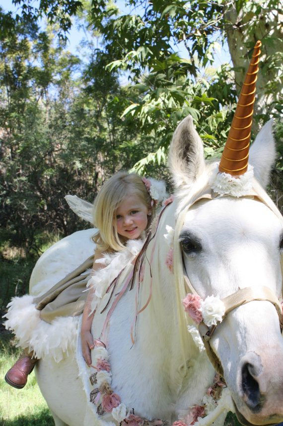 [Get a unicorn horn for your horse on Etsy!] 'We don't have tack for that,' presented by ThinLine