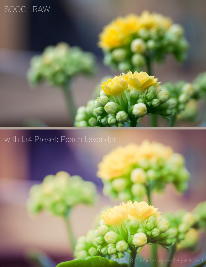Creative Colour Effects in Lightroom 4: Peach Lavender