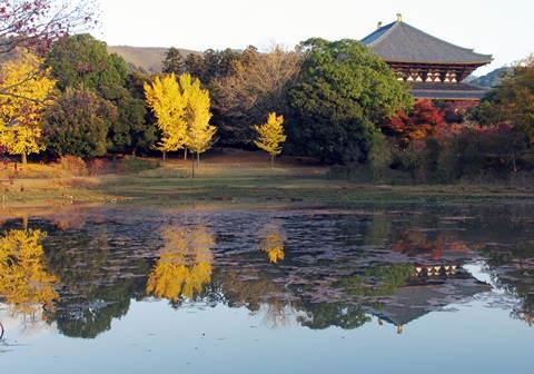 秋の夕日に照る大仏池と大仏殿