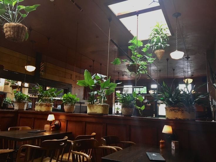 A visit to the sweet, sleepy town of Centralia, WA. Mcmenamins Olympic Club is located in the historic downtown #travel #adventure #hotel #pub #twelveam #blog