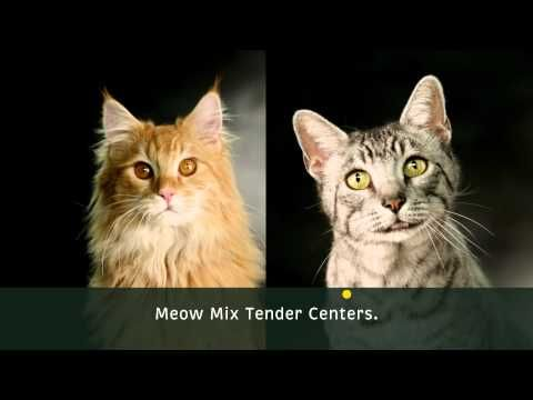 No matter if you're hard on the outside, everyone has a Tender Center.  How cute is this commercial?