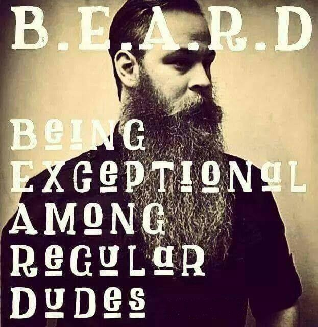 Definition Of A Beard From Beardoholic.com