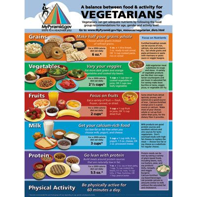 The New Becoming Vegetarian: The Essential Guide To A Healthy Vegetarian Diet $13.95