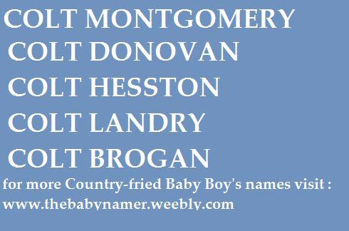 Country - western Baby Boy names!   www.thebabynamer.weebly.com
