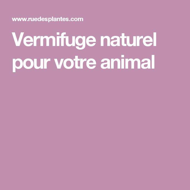 Vermifuge naturel pour votre animal