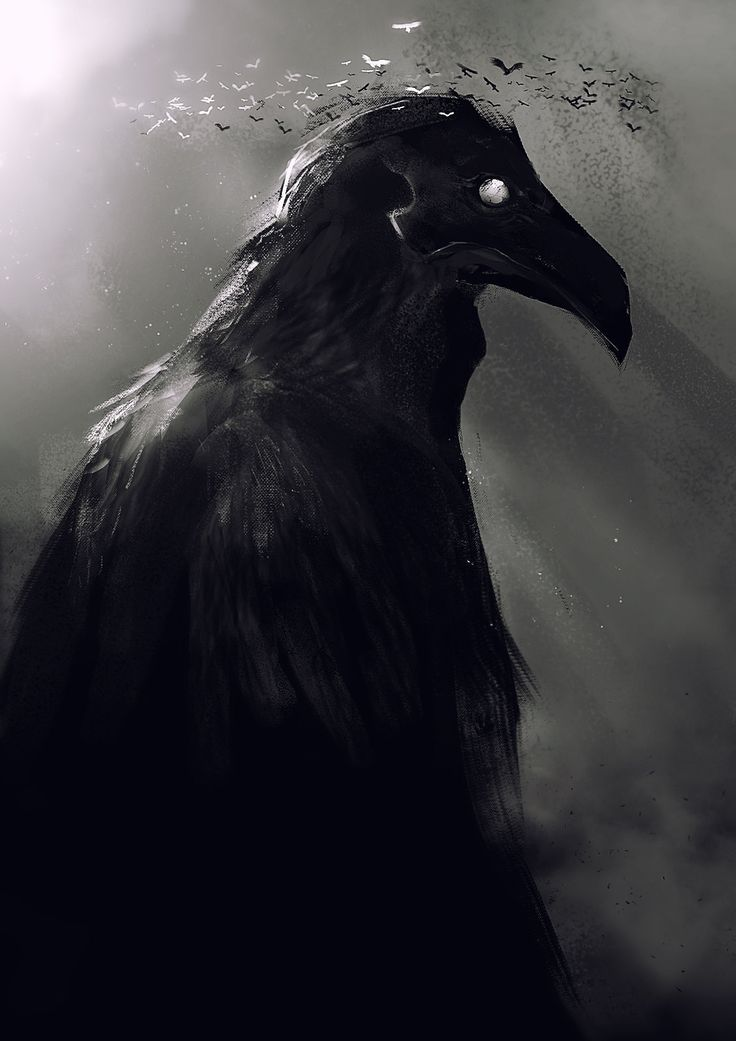 Crow God, Kevin Macio on ArtStation at http://www.artstation.com/artwork/crow-god-9137351a-af61-4dc2-b23c-30e7cb4c0f55