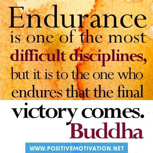 Endurance Quotes Extraordinary 200 Endurance Quotesquotesurf