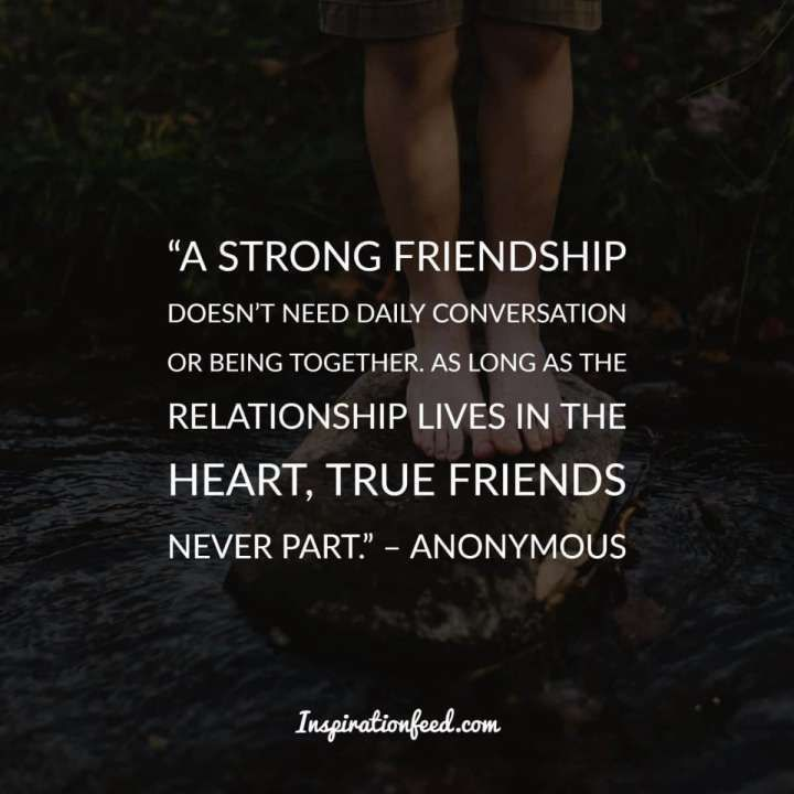 12 Special Friend Quotes Inspirational Friendship Quote