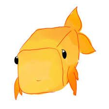 Image result for boxfish ART
