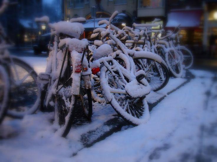 Lot's of bikes, lot's of snow!