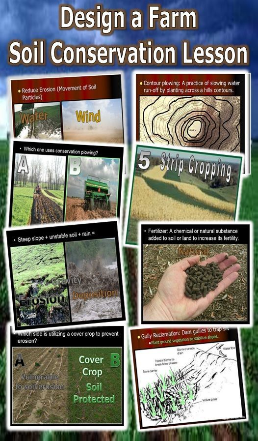 Students get about soil conservation learning about the dust bowl, then design a farm using soil conservation measures. Students learn about contour plowing, crop rotation, alley cropping, wind breaks, increasing fertility, and much more. Built-in quizzes, video links, and much more are provided. Enjoy! Science from Murf LLC