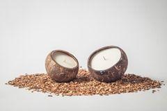 Coconut Candle (2 pieces) De donkere dagen komen er weer aan en dat betekent in veel huishoudens dat de kaarsjes weer gezellig aan gaan voor wat sfeer. Sinds kort zijn er bij Green Jump kaarsen van bijenwas en sojawas verkrijgbaar. Waarom deze producten? Omdat het gebruik van gewone kaarsen niet zo gezond is.