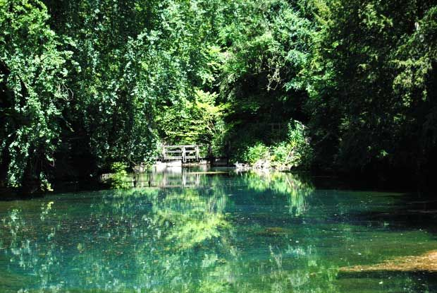 Silent Pool on the Newlands Corner and Shere Walk