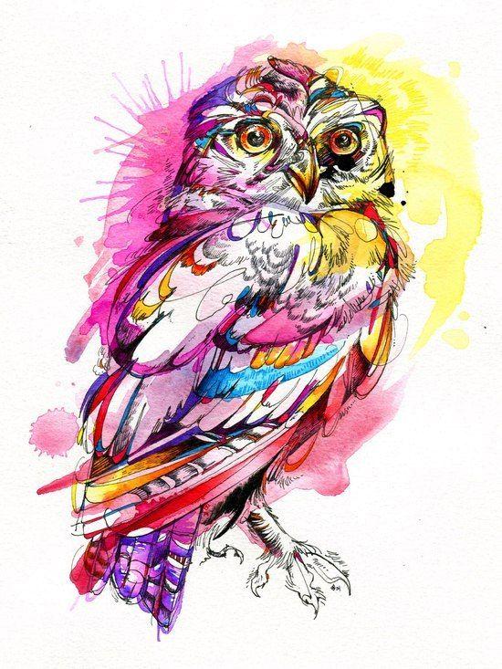 Совы на любой вкус и цвет! сова, эскиз, Картинки, рисунок, птицы, Интересное…