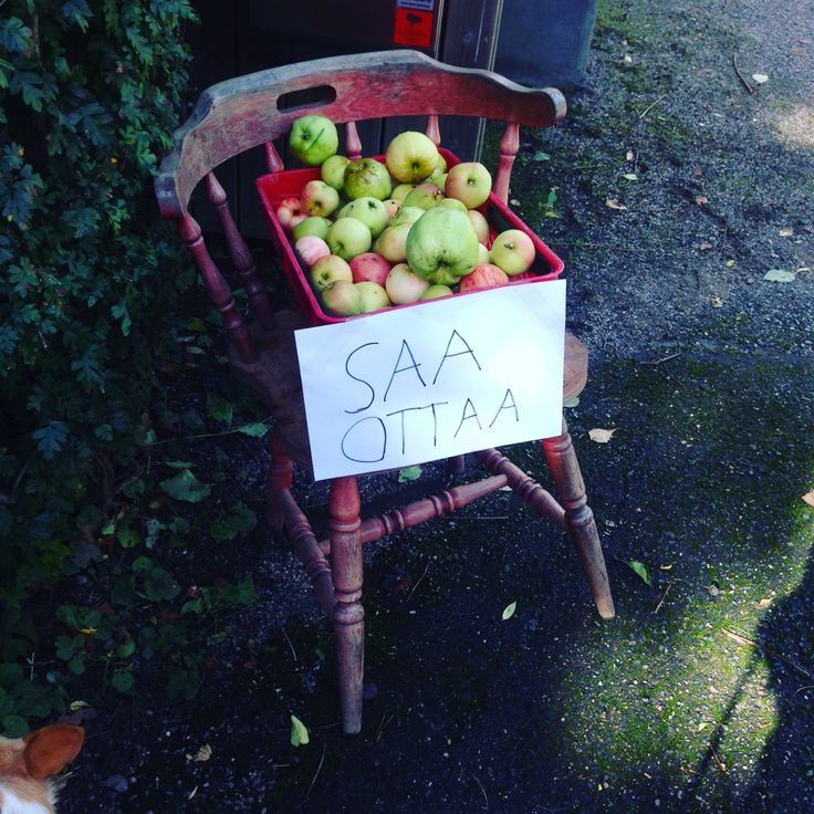 Take an apple.