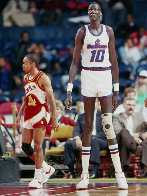 old school nba.... Manute Bol and Spud Webb