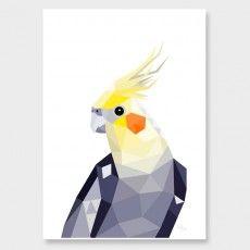 Cockatiel Art Print by Tiny Kiwi