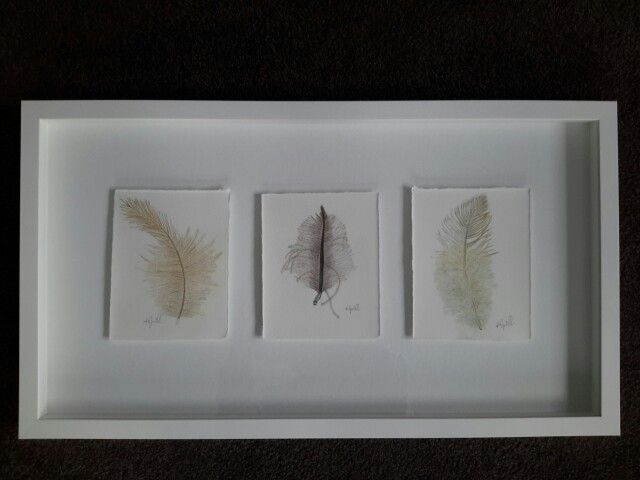 New Zealand bird feathers  Drawn by Kristin.Ivill.Art using Faber-Castell pencils