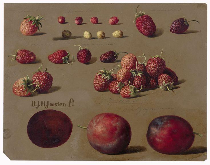 Aardbeien en pruimen, Dirk Jan Hendrik Joosten, 1828 - 1882