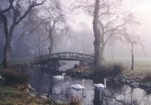 Stanley Park Vancouver bc canada Lost Lagoon nature images photographs pictures tourism