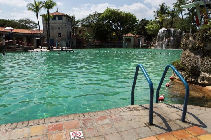 17 Best Images About Cool Pools On Pinterest Quails Natural Swimming Pools And Miami