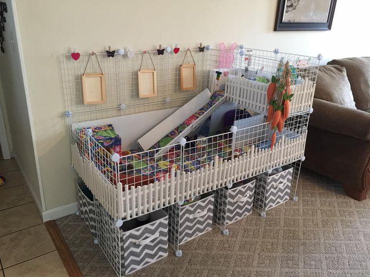 My C&C Cage 2x4 with 1x2 loft for my guinea pigs. Jaula o recinto para Cobayos, Cobayas, Güimos, Cuy, Cui, Conejillo de Indias.