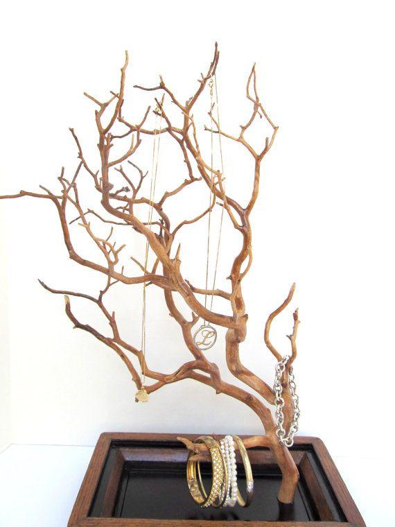 12 Best Manzanita Tree Images On Pinterest Manzanita