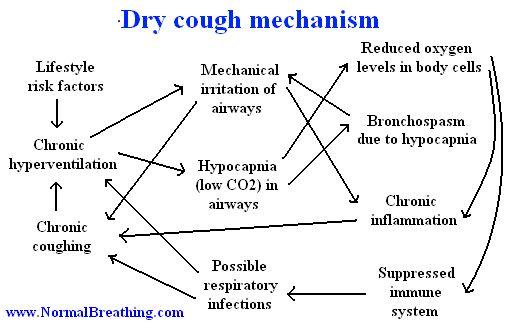 Dry cough mechanism (chart)