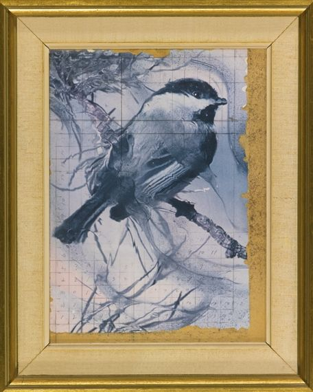 Joseph Cornell Birds