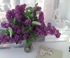 Flori Liliac ♥   via Facebook  #accessoriesmaria #jewelry #accessories  #jewels #charms #handmade #atelie #worckshop #creative